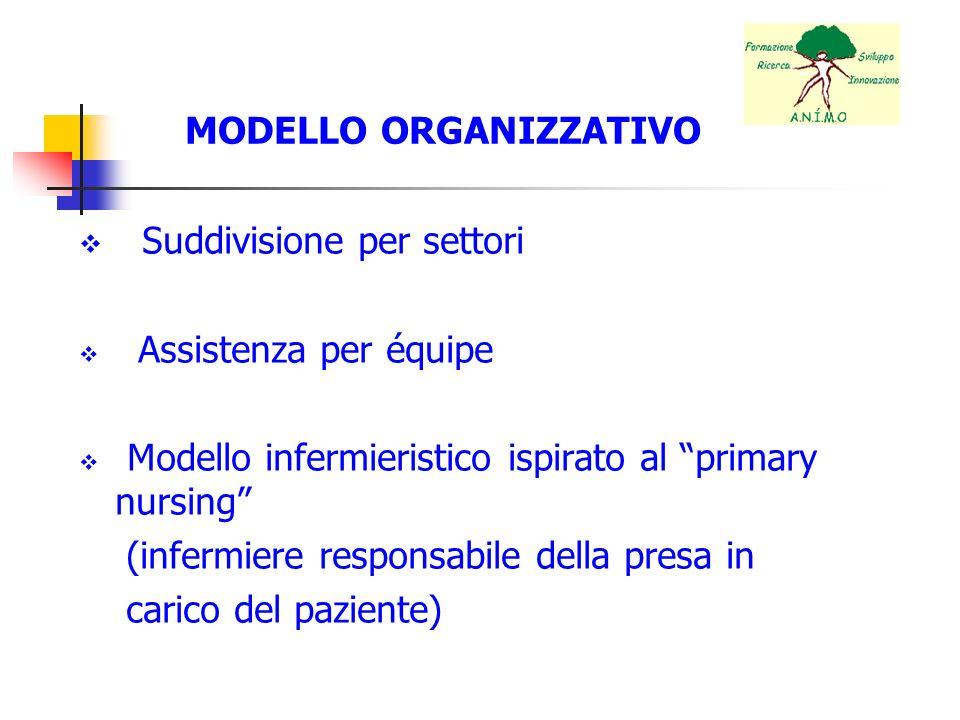 MODELLO ORGANIZZATIVO Suddivisione per settori Assistenza per équipe Modello infermieristico ispirato al primary nursing (infermiere responsabile dell