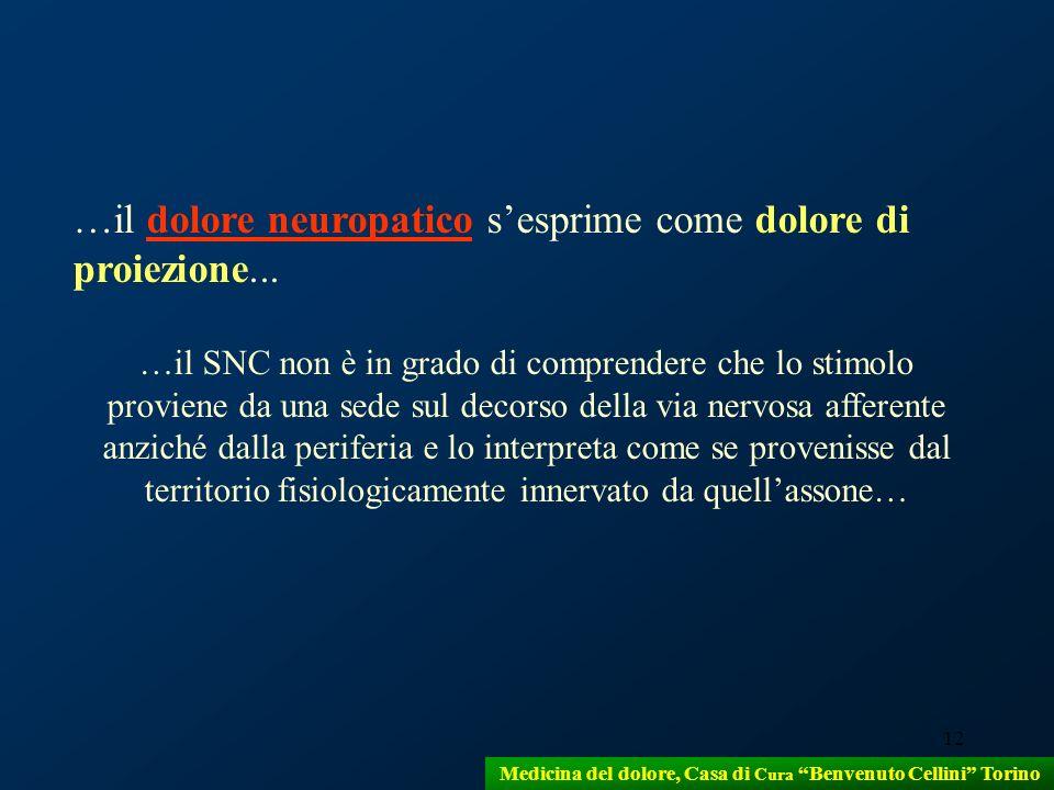 12 …il dolore neuropatico sesprime come dolore di proiezione... …il SNC non è in grado di comprendere che lo stimolo proviene da una sede sul decorso