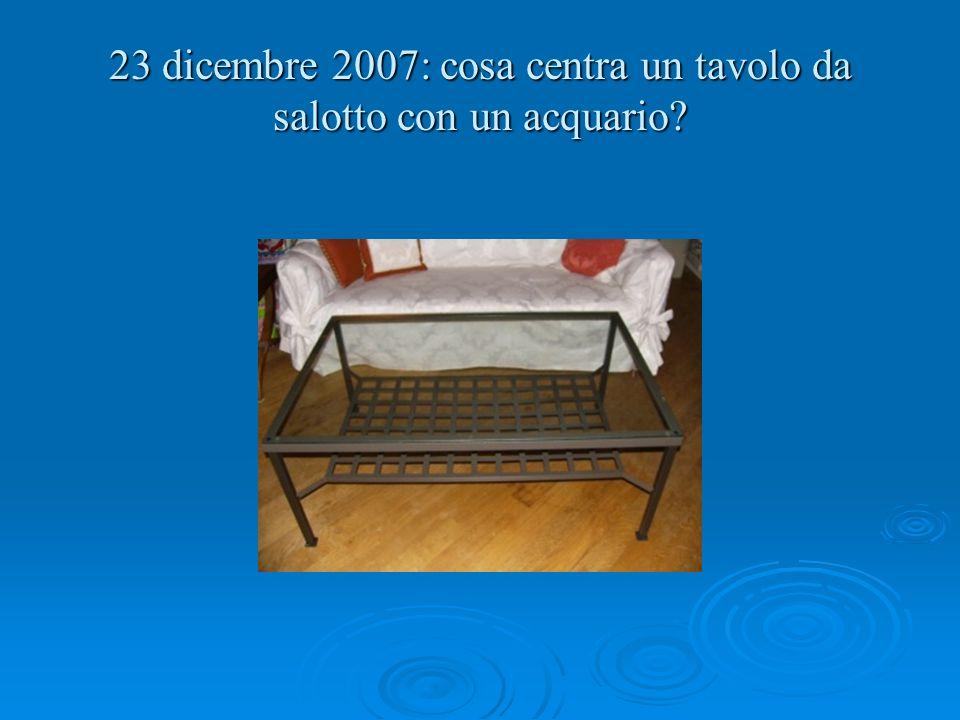 23 dicembre 2007: cosa centra un tavolo da salotto con un acquario?