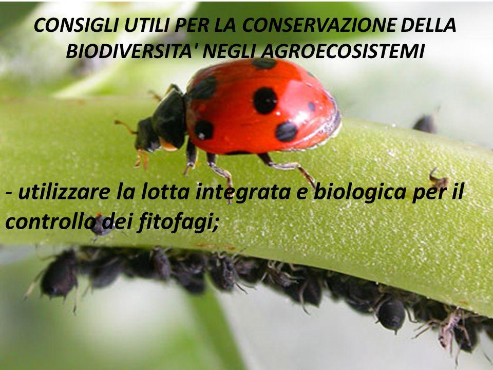 CONSIGLI UTILI PER LA CONSERVAZIONE DELLA BIODIVERSITA' NEGLI AGROECOSISTEMI - utilizzare la lotta integrata e biologica per il controllo dei fitofagi