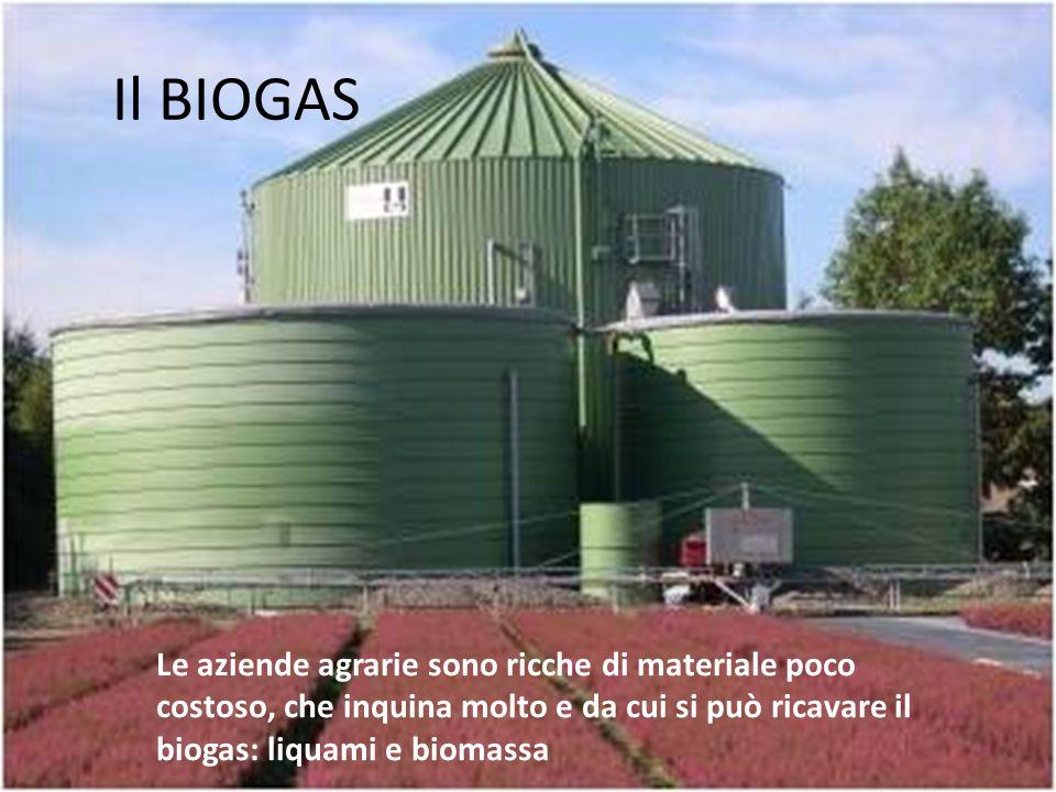 Il BIOGAS Le aziende agrarie sono ricche di materiale poco costoso, che inquina molto e da cui si può ricavare il biogas: liquami e biomassa