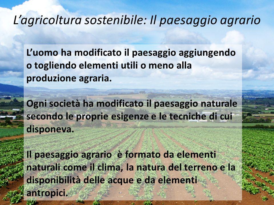 Luomo ha modificato il paesaggio aggiungendo o togliendo elementi utili o meno alla produzione agraria. Ogni società ha modificato il paesaggio natura