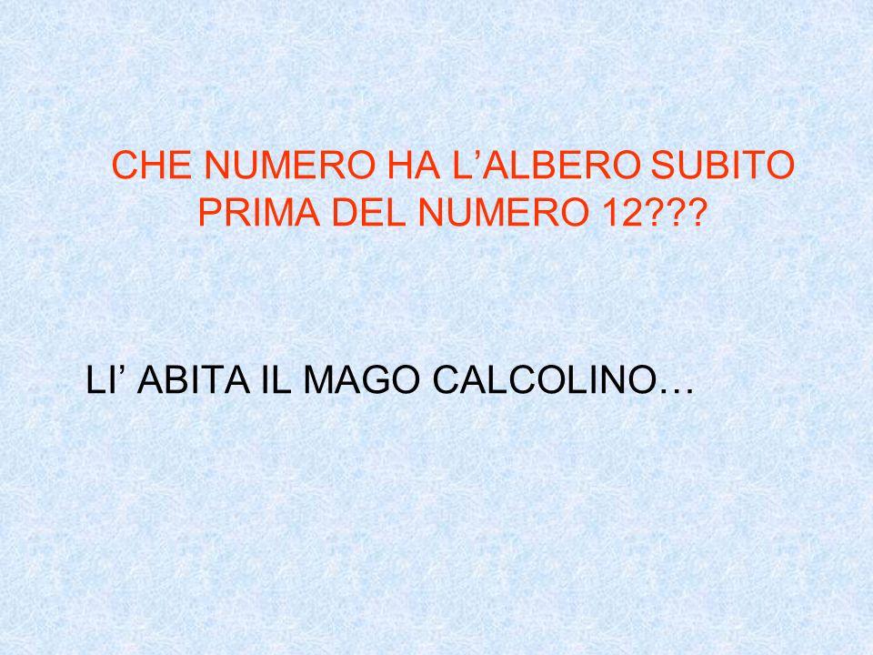 CHE NUMERO HA LALBERO SUBITO PRIMA DEL NUMERO 12??? LI ABITA IL MAGO CALCOLINO…