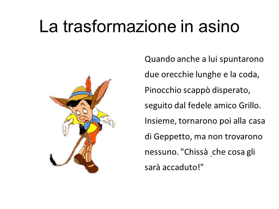 La trasformazione in asino Quando anche a lui spuntarono due orecchie lunghe e la coda, Pinocchio scappò disperato, seguito dal fedele amico Grillo. I