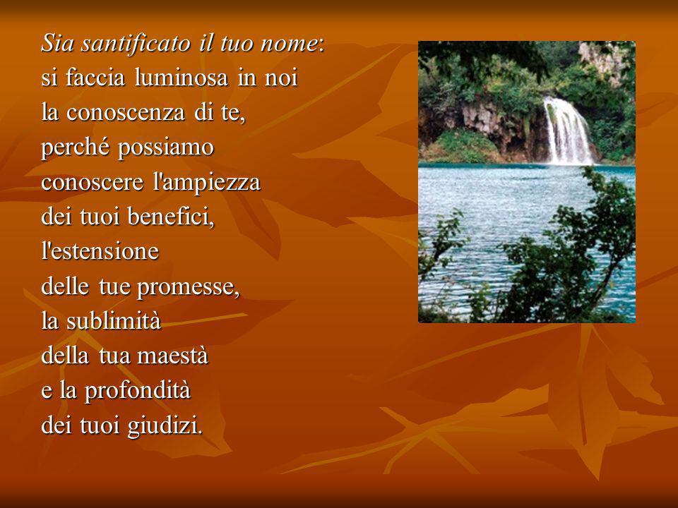 2ª SCHEDA § MOMENTO PERSONALE Per riflettere: La parola di Dio nella vita di Francesco.