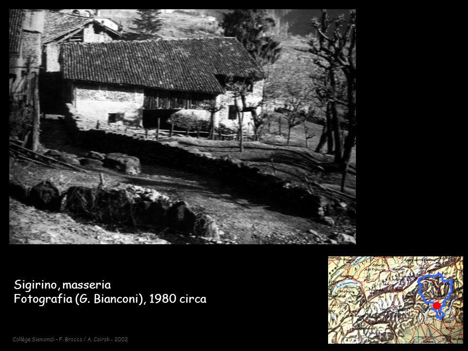 Collège Sismondi – F.Brocco / A. Cairoli - 2002 Sigirino, masseria Fotografia (G.