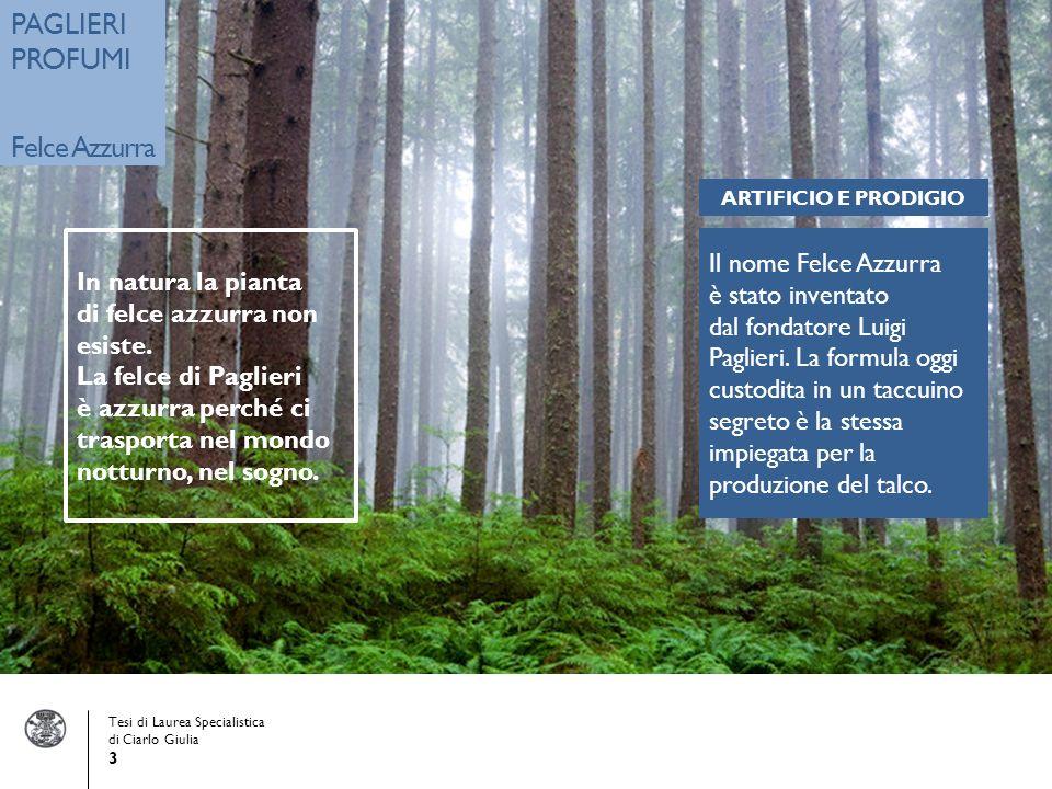 Tesi di Laurea Specialistica di Ciarlo Giulia 3 PAGLIERI PROFUMI Felce Azzurra Il nome Felce Azzurra è stato inventato dal fondatore Luigi Paglieri.