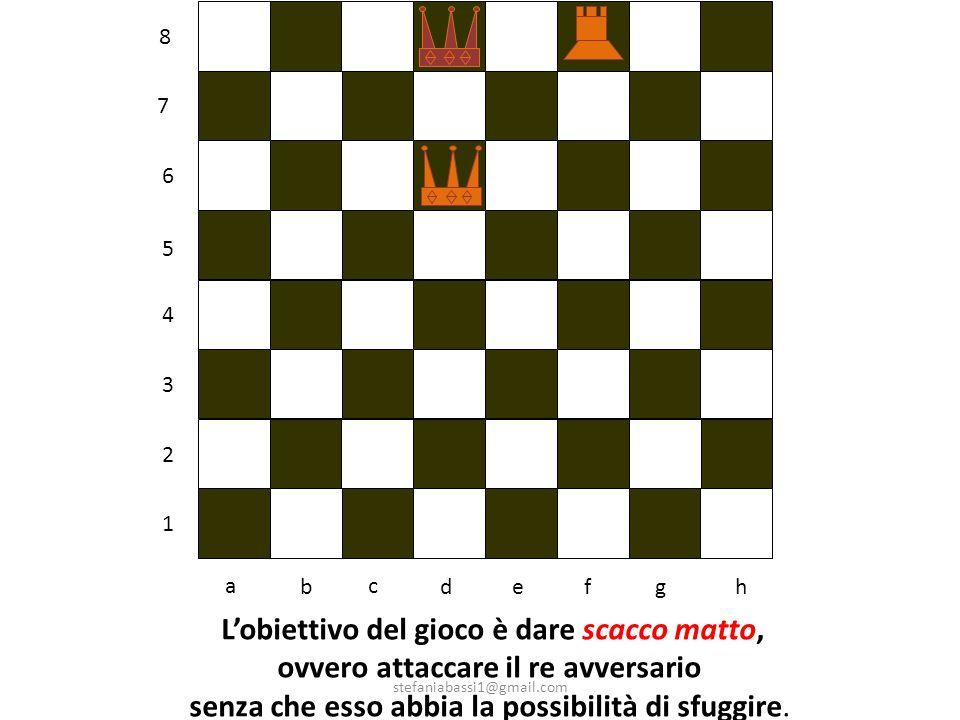 Lobiettivo del gioco è dare scacco matto, ovvero attaccare il re avversario senza che esso abbia la possibilità di sfuggire.