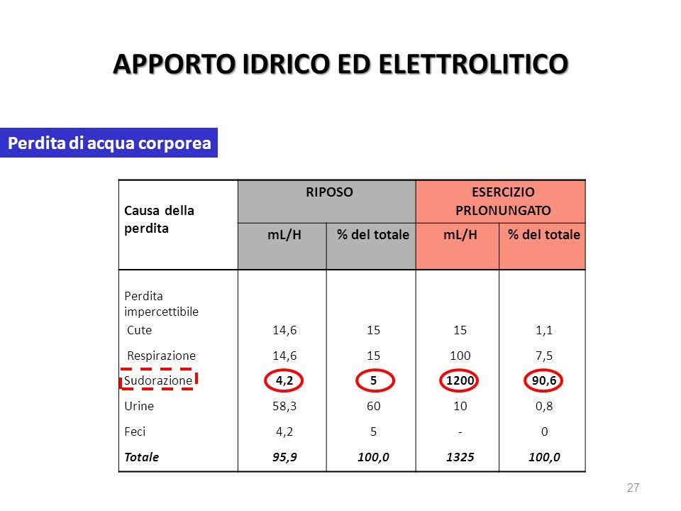 27 APPORTO IDRICO ED ELETTROLITICO Causa della perdita RIPOSOESERCIZIO PRLONUNGATO mL/H% del totalemL/H% del totale Perdita impercettibile Cute 14,615