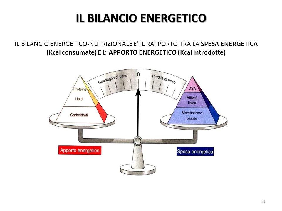 IL BILANCIO ENERGETICO-NUTRIZIONALE E IL RAPPORTO TRA LA SPESA ENERGETICA (Kcal consumate) E L APPORTO ENERGETICO (Kcal introdotte) 3 IL BILANCIO ENER