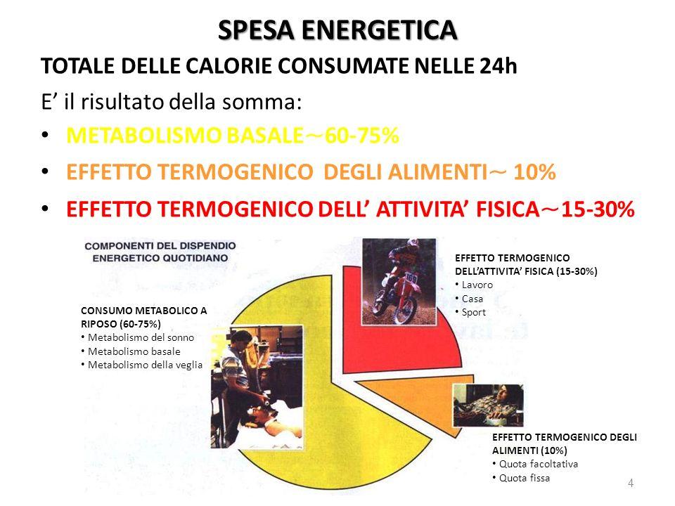 SPESA ENERGETICA TOTALE DELLE CALORIE CONSUMATE NELLE 24h E il risultato della somma: METABOLISMO BASALE ~ 60-75% EFFETTO TERMOGENICO DEGLI ALIMENTI ~