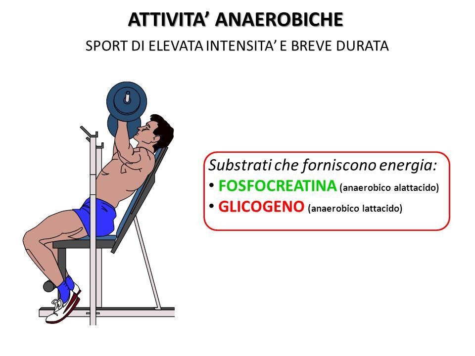 SPORT DI ELEVATA INTENSITA E BREVE DURATA ATTIVITA ANAEROBICHE Substrati che forniscono energia: FOSFOCREATINA (anaerobico alattacido) GLICOGENO (anae