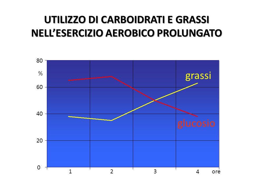 1234 UTILIZZO DI CARBOIDRATI E GRASSI NELLESERCIZIO AEROBICO PROLUNGATO ore grassi glucosio 1234 ore 0 20 40 60 80 %