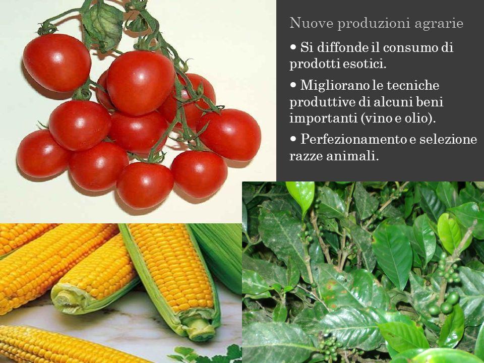 Nuove produzioni agrarie Si diffonde il consumo di prodotti esotici. Migliorano le tecniche produttive di alcuni beni importanti (vino e olio). Perfez