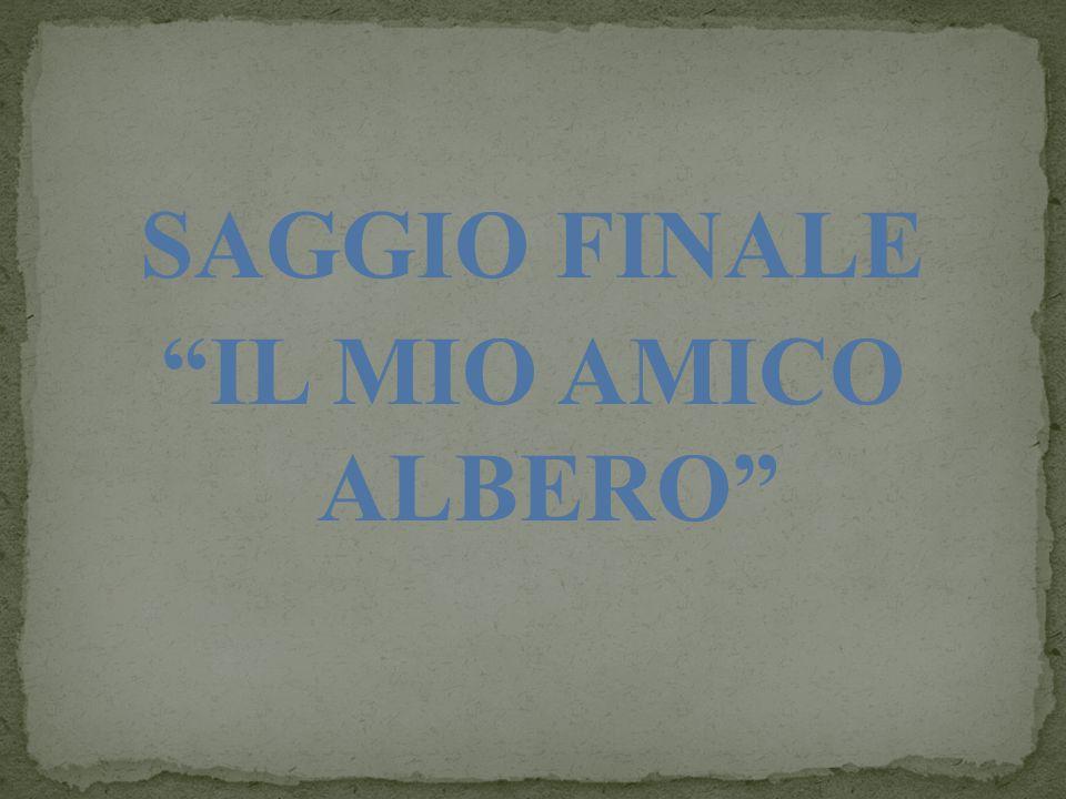 SAGGIO FINALE IL MIO AMICO ALBERO