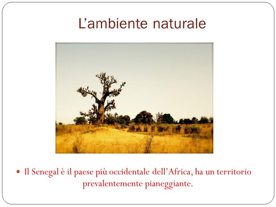 Lambiente naturale Il Senegal è il paese più occidentale dellAfrica, ha un territorio prevalentemente pianeggiante.