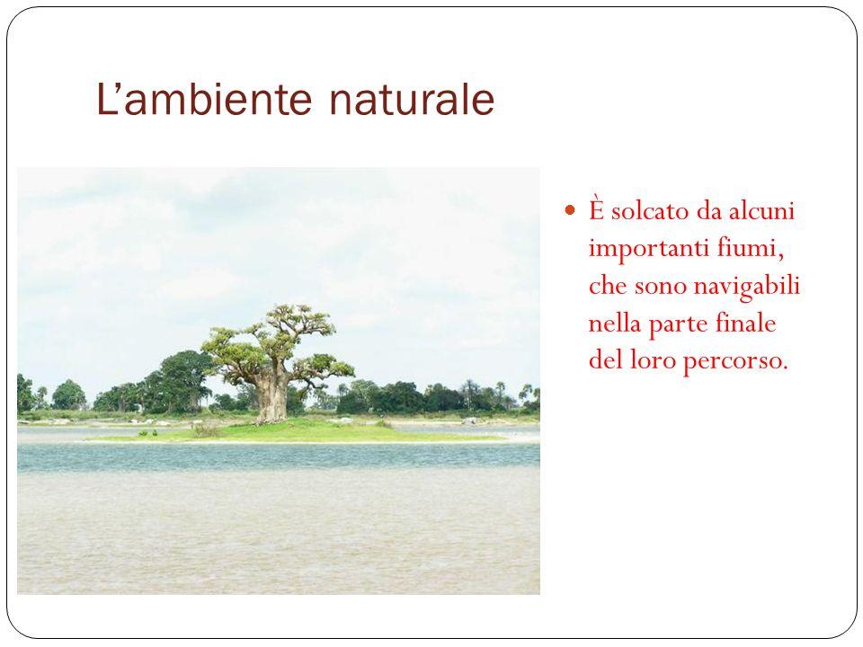 Lambiente naturale È solcato da alcuni importanti fiumi, che sono navigabili nella parte finale del loro percorso.