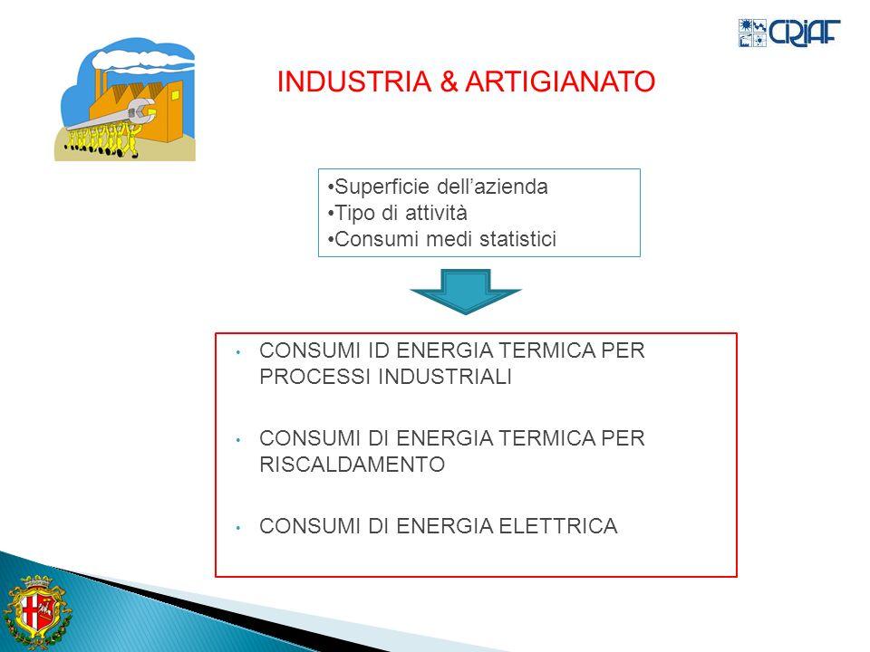 CONSUMI ID ENERGIA TERMICA PER PROCESSI INDUSTRIALI CONSUMI DI ENERGIA TERMICA PER RISCALDAMENTO CONSUMI DI ENERGIA ELETTRICA INDUSTRIA & ARTIGIANATO Superficie dellazienda Tipo di attività Consumi medi statistici