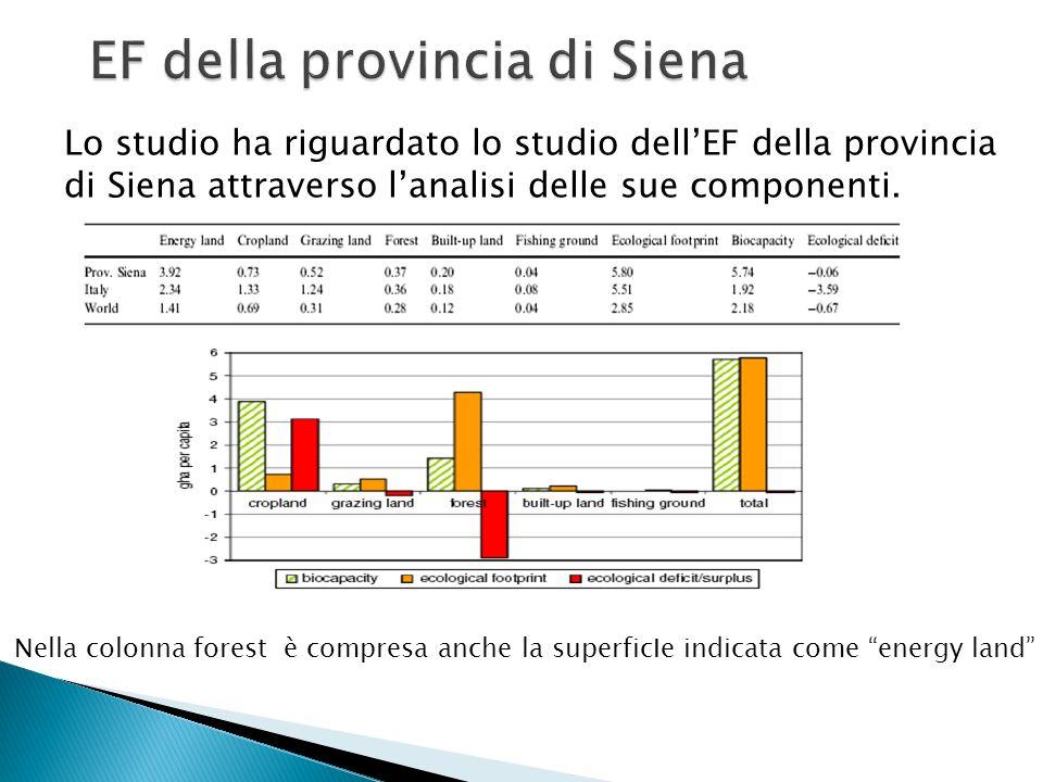 Lo studio ha riguardato lo studio dellEF della provincia di Siena attraverso lanalisi delle sue componenti.