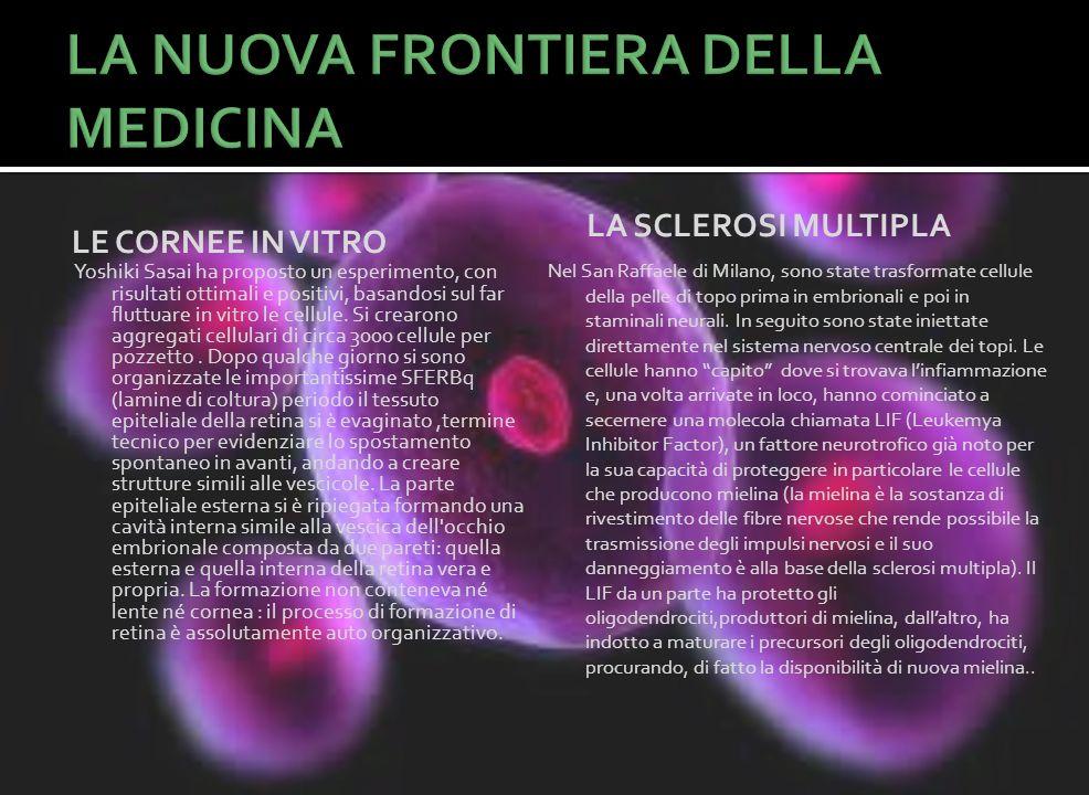 LE CORNEE IN VITRO Yoshiki Sasai ha proposto un esperimento, con risultati ottimali e positivi, basandosi sul far fluttuare in vitro le cellule. Si cr