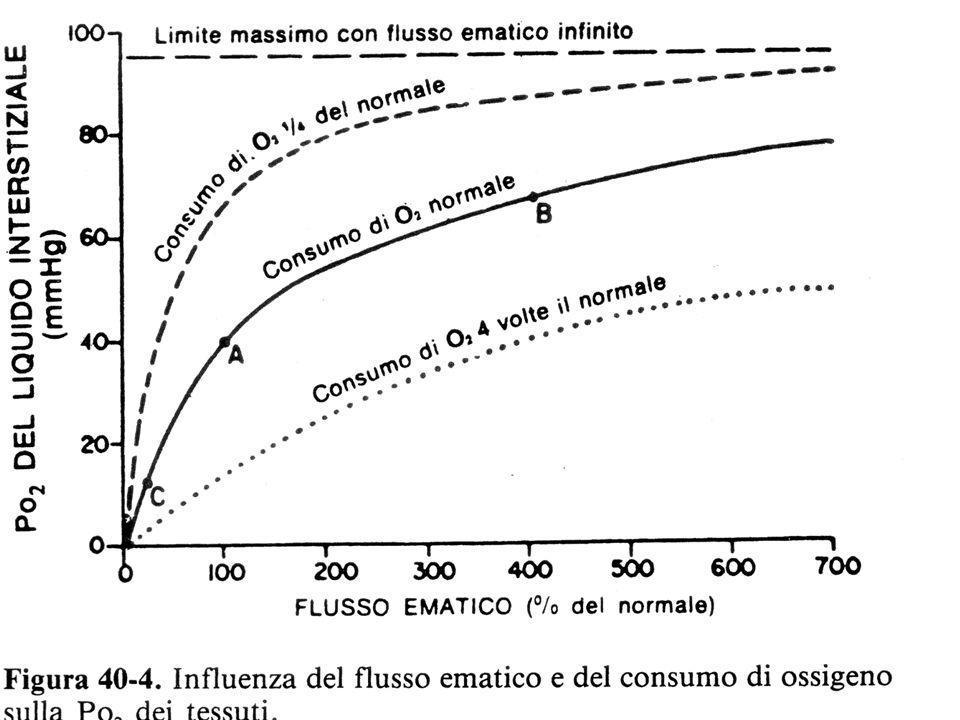 SITUAZIONE NORMALE TENDENZA DEL Hb AD OSSIDARSI SISTEMA ENZIMATICO MANTIENE Fe++ 0.5 % ALLO STATO DI METEMOGLOBINA ( Fe+++ ) MANCANZA CONGENITA DI METEMOGLOBINA REDUTTASI ANOMALIE SOSTITUZIONE DI UN AMINOACIDO GRAN PARTE DEL FERRO CIRCOLANTE E ALLO STATO FERRICO ( Fe+++) METEGLOBINEMIE : Fe+++