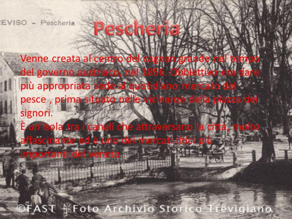 Venne creata al centro del cagnan grande nel tempo del governo austriaco, nel 1856.