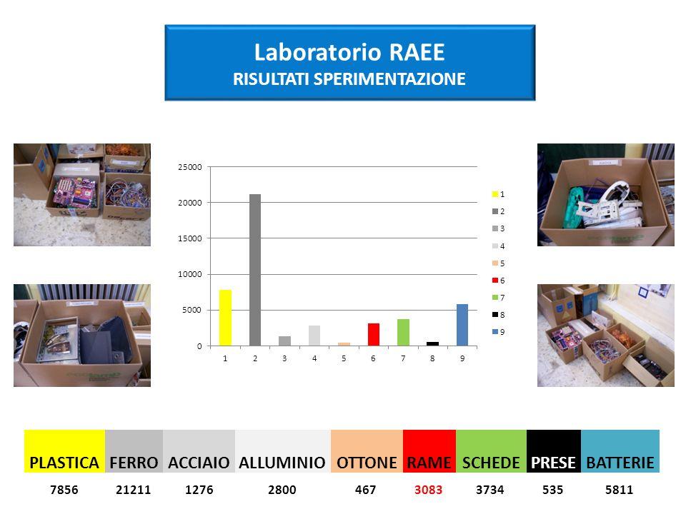 PLASTICAFERROACCIAIOALLUMINIOOTTONERAMESCHEDEPRESEBATTERIE Laboratorio RAEE RISULTATI SPERIMENTAZIONE 78562121112762800467308337345355811
