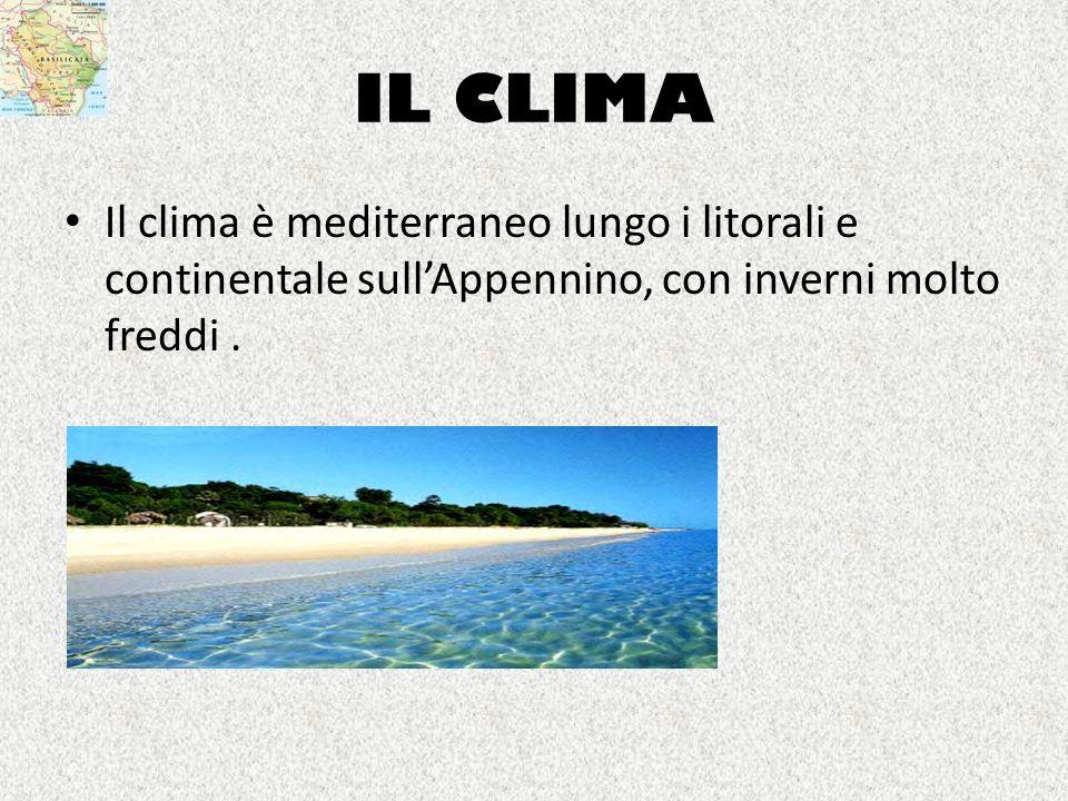 IL CLIMA Il clima è mediterraneo lungo i litorali e continentale sullAppennino, con inverni molto freddi.