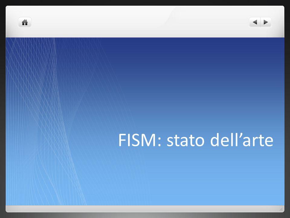 FISM: stato dellarte