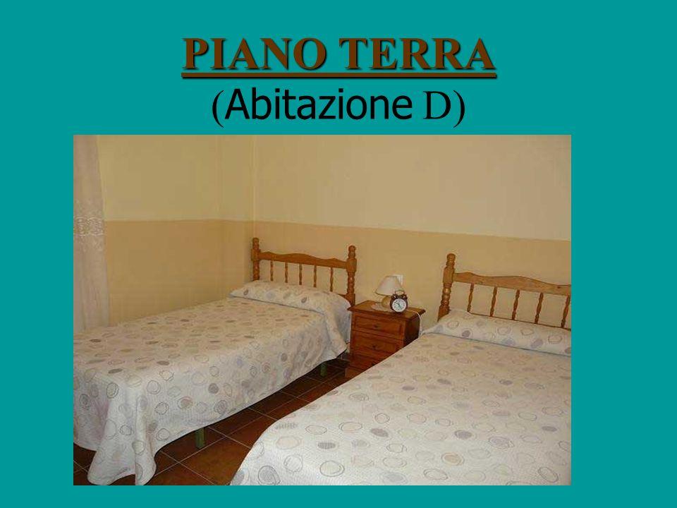 PIANO TERRA PIANO TERRA ( Abitazione C)