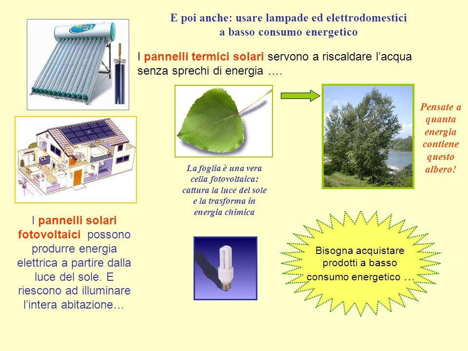 I pannelli solari fotovoltaici possono produrre energia elettrica a partire dalla luce del sole.