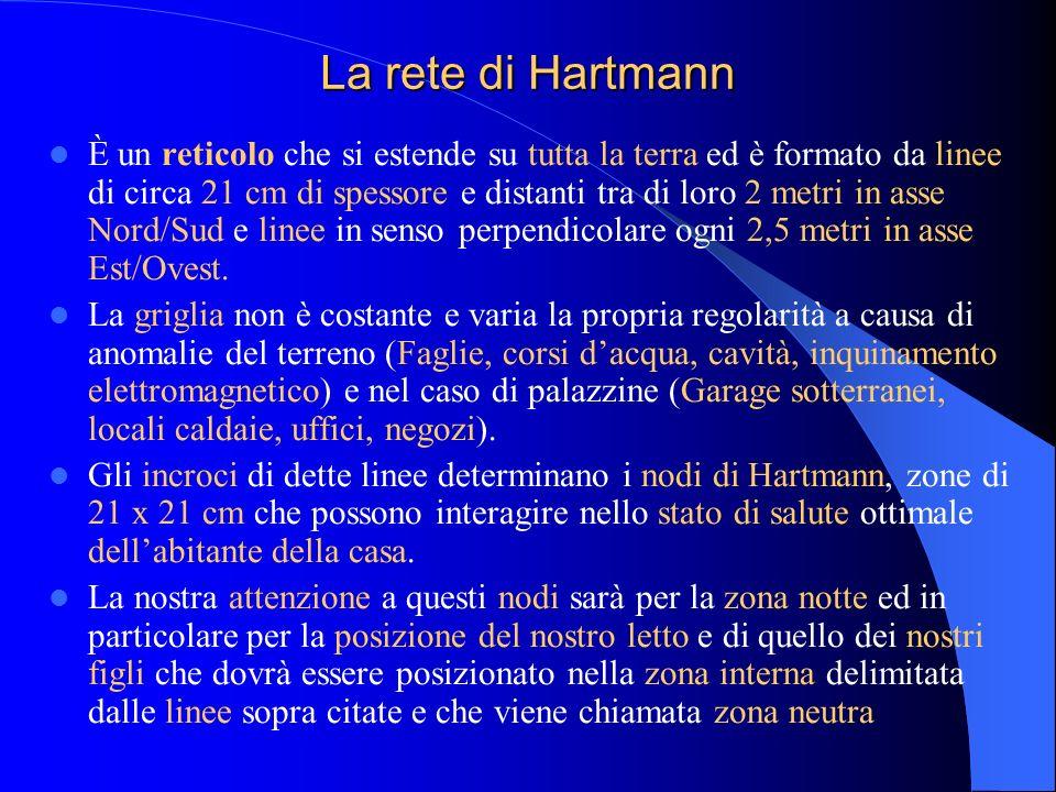 La rete di Hartmann È un reticolo che si estende su tutta la terra ed è formato da linee di circa 21 cm di spessore e distanti tra di loro 2 metri in