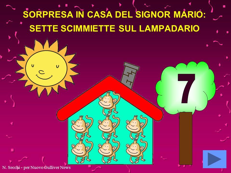 SORPRESA IN CASA DEL SIGNOR MARIO: SETTE SCIMMIETTE SUL LAMPADARIO