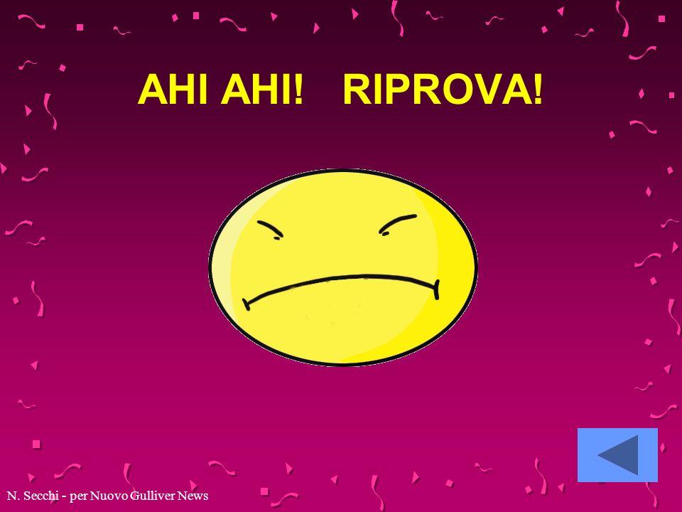 AHI AHI! RIPROVA! N. Secchi - per Nuovo Gulliver News