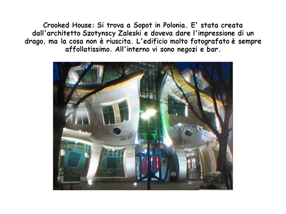 The WTF House: Si trova negli Stati Uniti, precisamente a Cincinnati nel quartiere di Hyde Park. E' opera di un professore universitario che l'ha prog