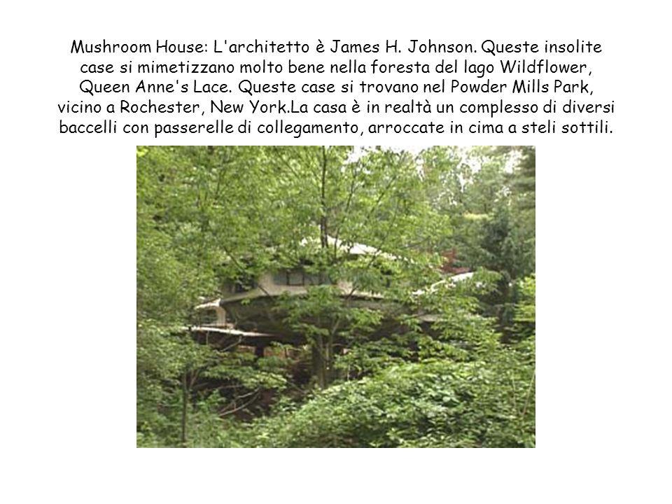 Casa sottosospra: Progettista e costruttore è Daniel Czapiewski. Per costruirla ci ha impiegato 5 volte più a lungo del previsto perchè i lavoratori q