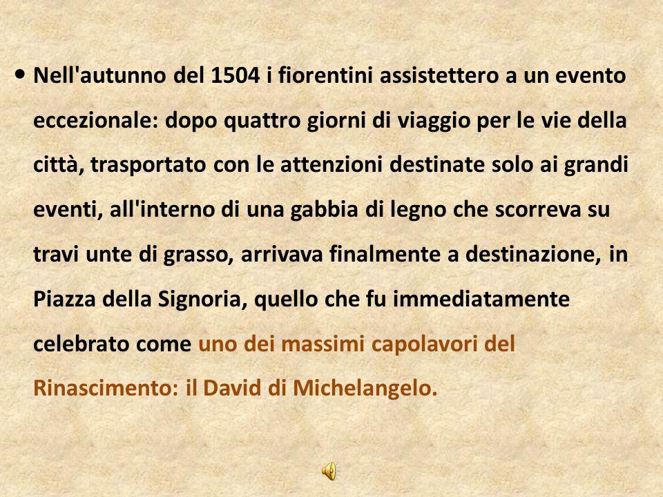 Il David di Michelangelo - Nell'autunno del 1504 i fiorentini assistettero a un evento eccezionale: dopo quattro giorni di viaggio per le vie della ci