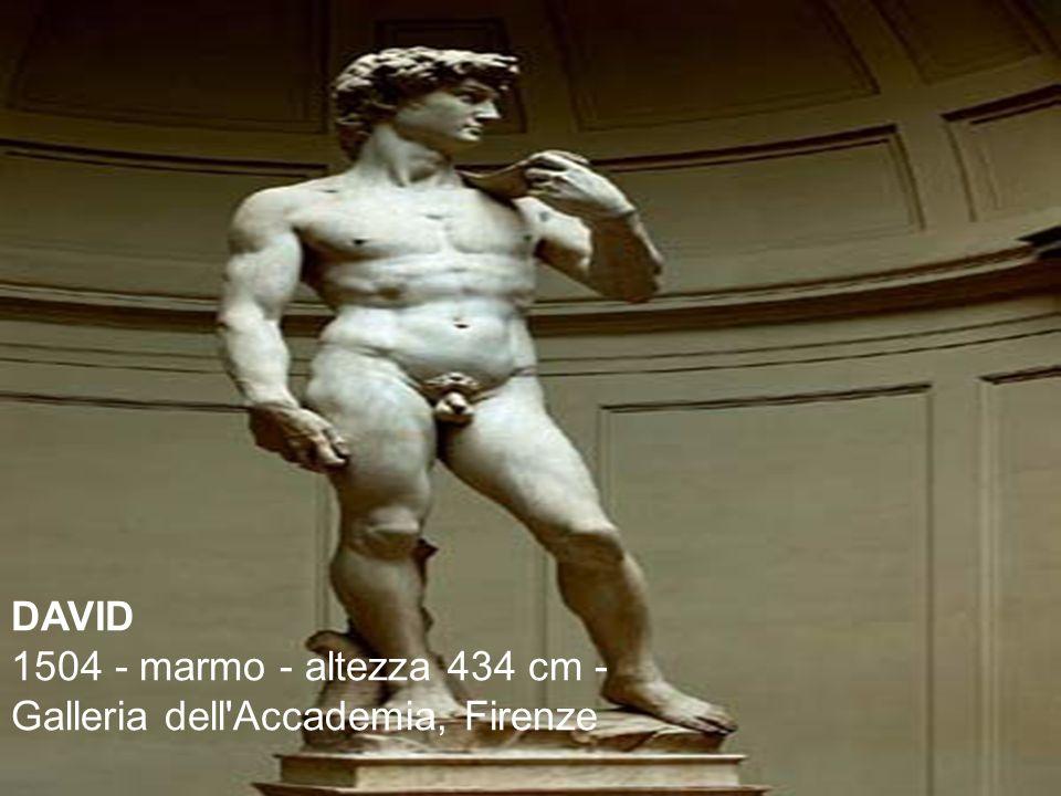 DAVID 1504 - marmo - altezza 434 cm - Galleria dell'Accademia, Firenze