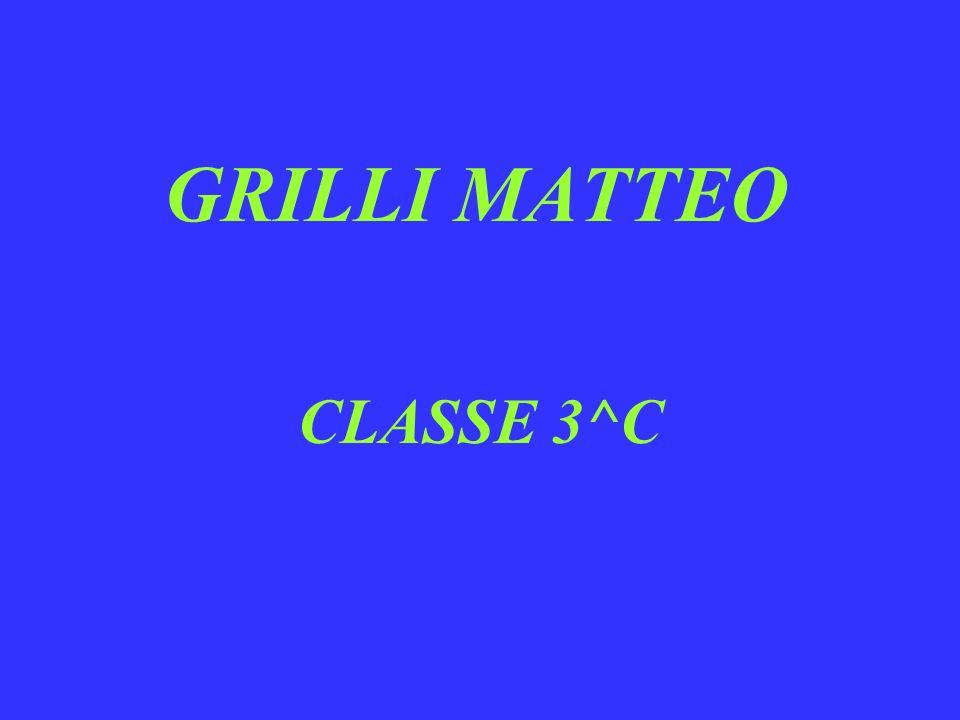 GRILLI MATTEO CLASSE 3^C