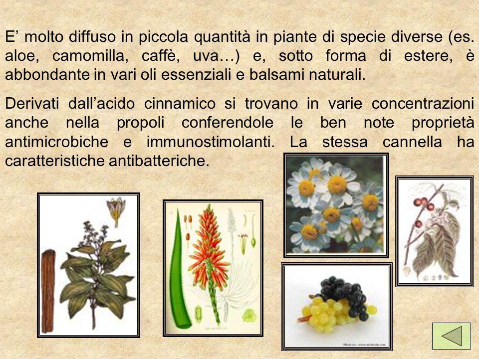 E molto diffuso in piccola quantità in piante di specie diverse (es.
