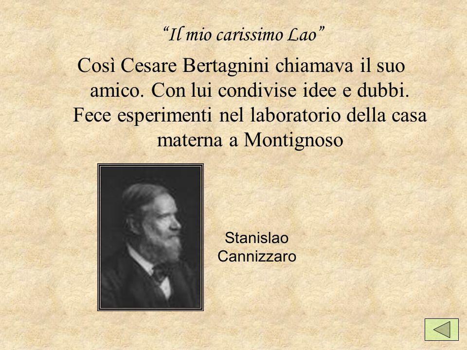 Il mio carissimo Lao Così Cesare Bertagnini chiamava il suo amico.