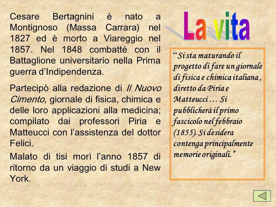 Cesare Bertagnini con Piria fece alcuni viaggi importanti in vari paesi europei, rendendo noti i risultati delle sue ricerche sui composti bisolfitici delle aldeidi.