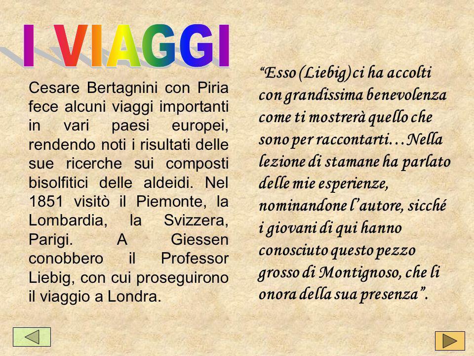 I chimici italiani hanno avuto sempre una forte vocazione politica.