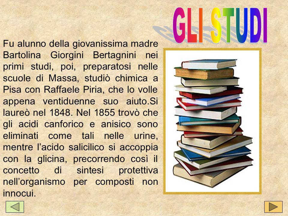 Fu alunno della giovanissima madre Bartolina Giorgini Bertagnini nei primi studi, poi, preparatosi nelle scuole di Massa, studiò chimica a Pisa con Raffaele Piria, che lo volle appena ventiduenne suo aiuto.Si laureò nel 1848.