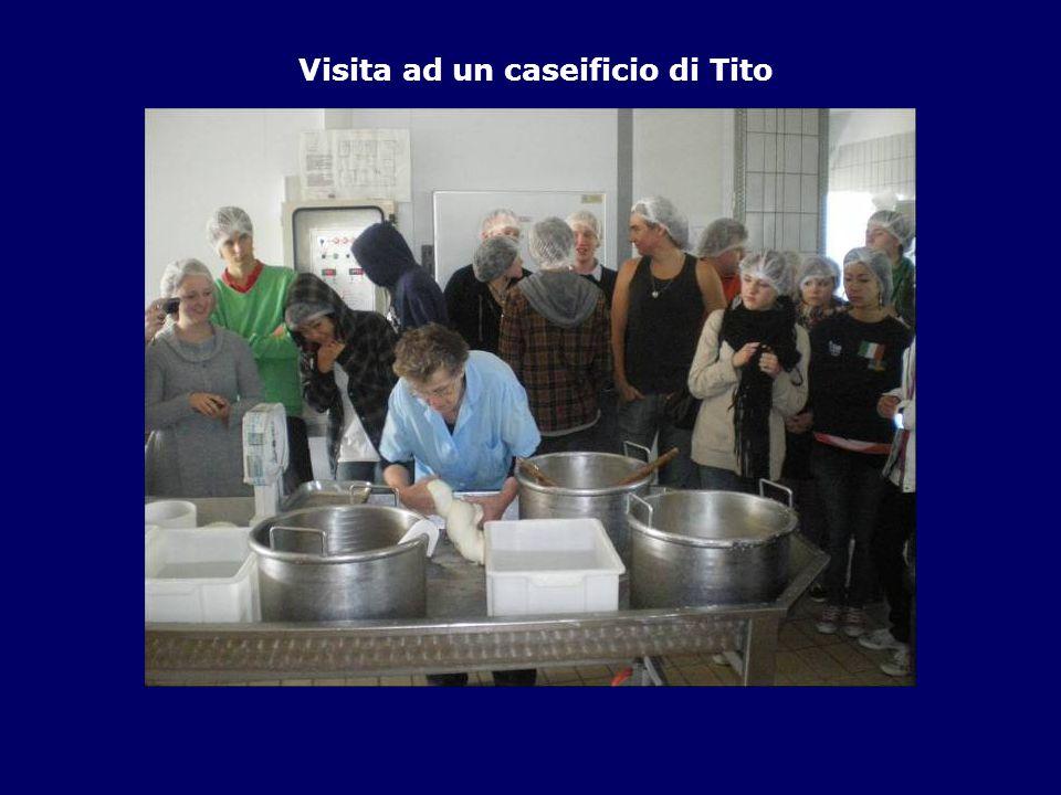 Visita ad un caseificio di Tito