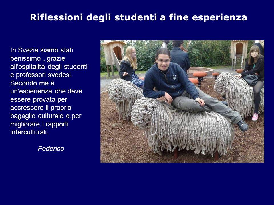 Riflessioni degli studenti a fine esperienza In Svezia siamo stati benissimo, grazie allospitalità degli studenti e professori svedesi. Secondo me è u