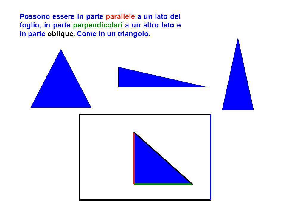 Rispetto al foglio le figure possono essere disposte in vari modi: Possono essere parallele a un lato del foglio P o s s o n o e s s e r e o b l i q u