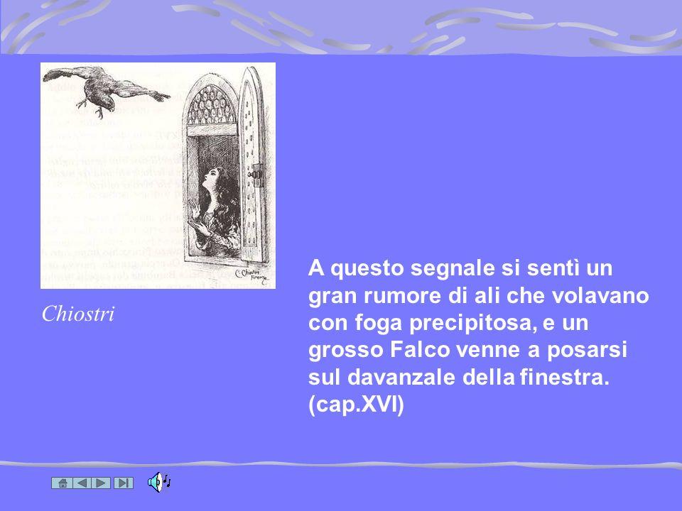 Pinocchio …adattamento di una illustrazione di Cassinelli