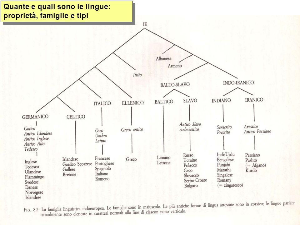 Quante e quali sono le lingue: proprietà, famiglie e tipi