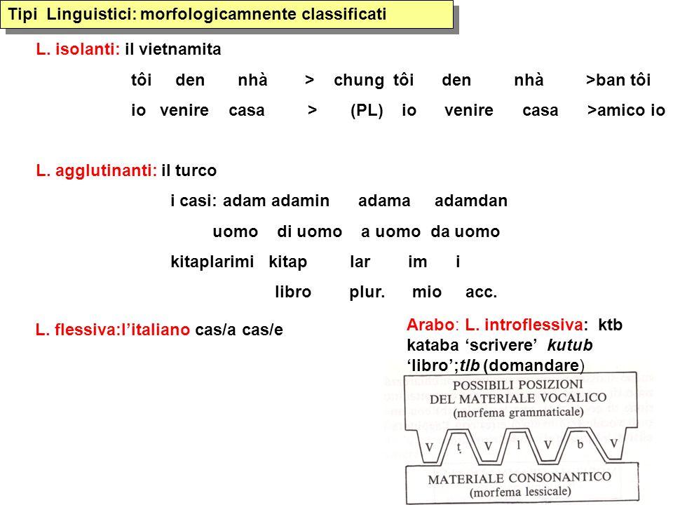 Tipi Linguistici: morfologicamnente classificati Arabo: L. introflessiva: ktb kataba scrivere kutub libro;tlb (domandare) L. isolanti: il vietnamita t